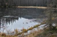 Na Hadí vrch a jezero Laka
