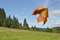 Výstup na Žlíbský vrch s překvapením a na hrad Kunžvart