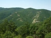 Börszöny - kopce nad Dunajem
