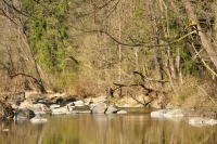 Trek u řek Lomnice a Skalice
