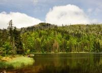 Výstupy na Luzný a Roklan Bavorským lesem