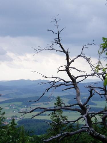 Z hojně navštěvovaného skalnatého vrcholu je krásný pohled do Českobudějovické a Křemežské kotliny.