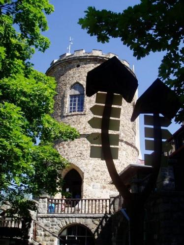 Název hory Kleť je jedním z nejstarších pojmenování českých hor. V dochovaných psaných listinách můžeme sledovat vývoj názvu asi takto: 1263 - Mons Naklethi, 1318 - Naklati, 1445 - Kletie, 1600 - Kleta, 1624 - Kleť, Kletý, od 17. století - Schöniger, lidově Schönigl, Šénygl, konec 19. století - Klet, od 1918 dodnes - Kleť