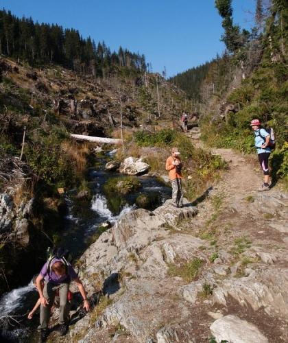 Vede zde naučná stezka Bílá Opava, která prochází po mnoha mostcích, schodištích a lávkách nejkrásnější horské bystřiny Jeseníků.