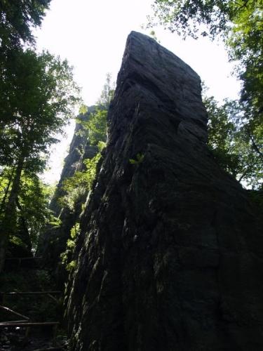 Dnes zaparkujeme Na Skřítku, známého motorestu a kolem stejnojmenného rašeliniště razíme lesy na hradní zříceninu Rabštejn.
