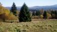 Kolem jsou bývalé pastviny, dnes nevyužívané a panuje tady klid a mír. Kocháme se výhledy ke Chlumu a Knížecímu Stolci.