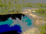 Jezírka ve slatích Jeleního potoka odrážejí nebeskou modř ve svých bezedných vodách.
