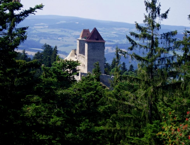 Pustý hrádek, to jsou vlastně zbytky předsunutého opevnění hradu Kašperk, který leží 400 metrů východně na skalnatém hřebenu a je na něho hezky z nadhledu vidět. Zde na Pustém hrádku původně byla pětiboká věž, která vznikla současně s hradem a cesta vedoucí k pravé hradní bráně tak, aby byla v celé délce pod kontrolou právě tohoto strážiště.