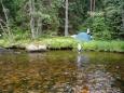 Mechové tábořiště