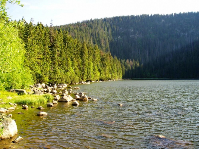K Plešnému jezeru cyklostezka samozřejmě také vede a lze ji jen doporučit.