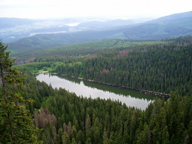 Nahoru k Stifterovu památníku, již těsně pod vrcholem Plechýho, vede strmý výstup. Výhledy na jezera (nejen Plešné, ale i nepříliš vzdálené Lipno) stojí za námahu. Tato fotka ještě zaznamenává zelený les v okolí, dnes postupující kůrovec odhalil již jiné pohledy.