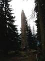 Od Adalberta Stiftera, rodáka z Horní Plané, jsem četl povídku Hvozd. Ta poprvé vyšla v roce 1842 a větší část se odehrává v domku u jezera, kam se před válkou se Švédy ukryla schovanka pána z Vítkova Hrádku. Zájem čtenářů i dnes budí také líčení krás šumavské přírody. Slavnostní odhalení 14,5m vysokého památníku se konalo 26. srpna 1877.