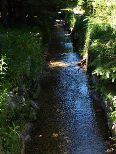 Nová vodní cesta umožnila splavování polenového dříví ze Šumavy a jeho dopravu až na odbytiště ve Vídni, čímž se podařilo hospodářsky využít lesní bohatství dosud nepřístupných šumavských hvozdů.