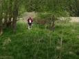 Náš další postup vede podél potoku. Má ale vést dle mapy po slušné cestě a ne bažinou, kam jsme zbloudili. Takže přeskáčeme do lesa ... Na asfaltku.