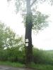 Opět jeden ze stromů se směrovkami