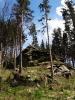 To, co jsme zdola považovali za vrchol, jsou jen skály s posledními zbytky lesa. Celý kopec je po orkánu Kirill odlesněný a čerstvě osázený stromky. Dole spíš jeřebinami, zde výš smrky.