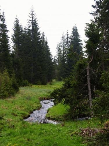 U Puchéřského potoka se míjíme s obřím těžebním strojem. Nejeví o nás zájem.