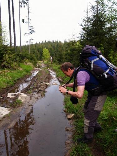 Koukneme do mapy a shodujeme se na zkratce kolem Rysího vrchu. Tady je však cesta dokonale zničená těžkou technikou a tak máme co dělat, abychom vůbec prošli. Cestou si můžeme v louži vyfotit i horské čolky. Ostatní tvrdí, že ve vodě viděli plout i nějakou malou podivnost s krunýřem, nakonec ale nic živého nenacházíme.