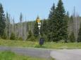 Směrovky a sežraný les