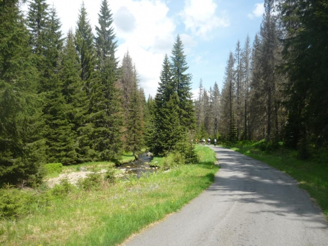 Cesta z Březníku