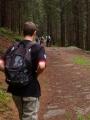 Tady je už pohodlná cesta vedoucí ke Křišťanovickému rybníku, u kterého je i malý kemp.