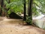 Kolem řeky
