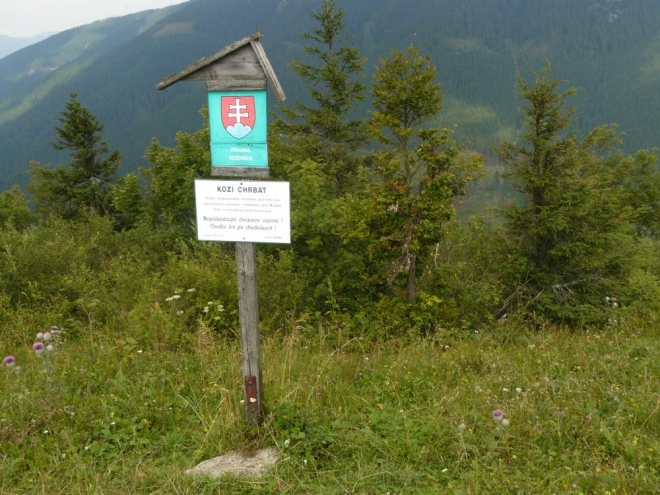 Na vrcholu je rezervace a vypadá to, že je co chránit.