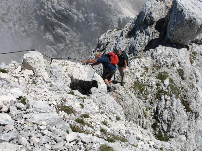Stejně jako mnozí další horalé zde na Kaninu i tento pejsek je české národnosti.