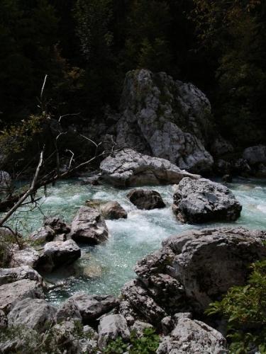 Výhledy na řeku jsou skvělé