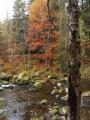 Okouzlení podzimem.