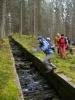 Přeskoč, přelez... Smyk do Plavebního potoka.