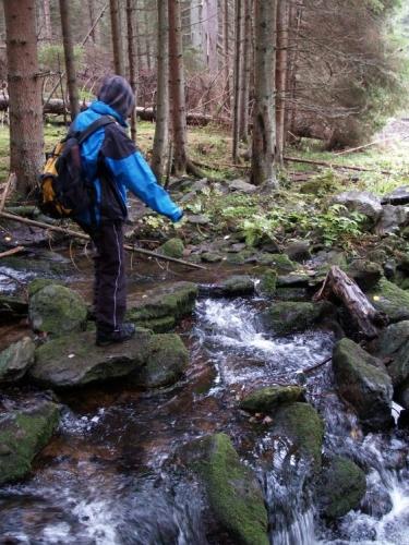 Plavení potok u soutoku s Křemelnou.
