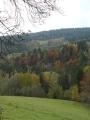 Souboj barev podzimu a nekonečně šedivé oblohy