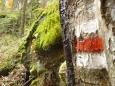 Značka v divočině