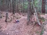 Stezkou kdysi procházely celé kolony povozů do Českého vnitrozemí a Bavor, a tak je cesta hluboce vryta do zdejšího měkkého terénu.