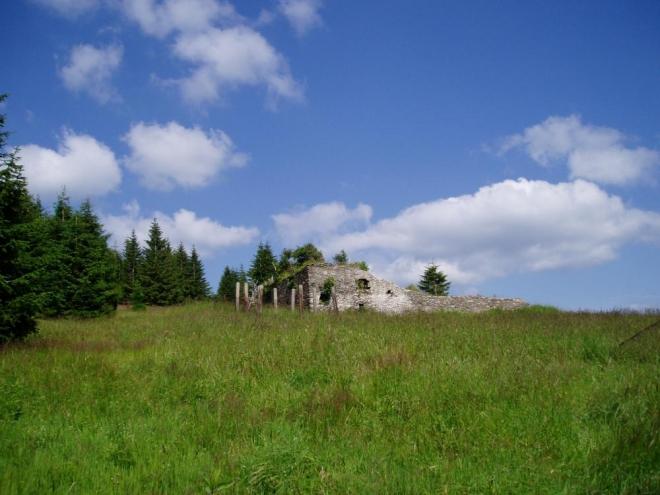 """Ruiny na Zhůří, kde původně stála osada. Historie tohoto místa začala již ve 14. století, kdy zde vedla Zlatá stezka a na úbočí Huťské hory stála věž pro ochranu stezky. Osada Zhůří (Haidl) byla ale založena pravděpodobně až okolo roku 1720, a to v souvislosti se dvěma sklárnami na úbočí hory. První písemná zmínka o obci (""""Haydl"""") je tak z roku 1785."""