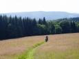 Samotný sestup k Vydře a Turnerce je dlouhý a výživný. Přes bývalou huť Hluboká se dostáváme k Zhůřskému potoku a kolem něj až k Vydře.