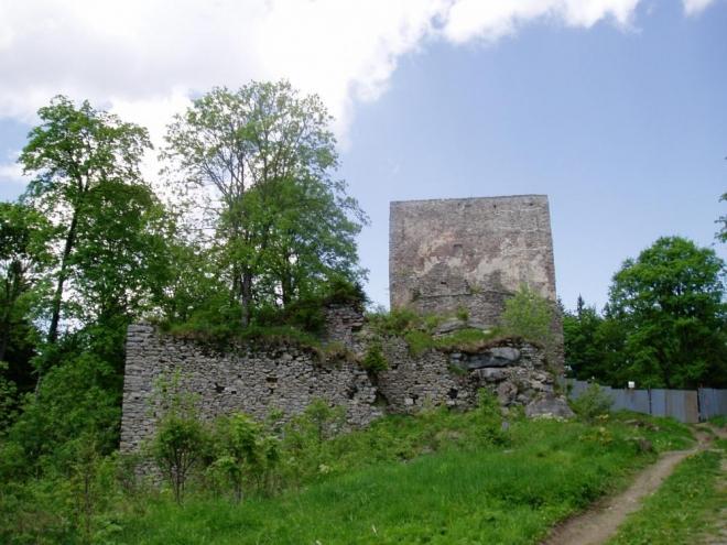 Vítkův kámen 1053m vysoký vrch je místem nejvýše položená zříceniny hradu v Čechách. Hrad založili ve 13. století Vítkovci a nedlouho poté přešel do majetku Rožmberků. V 16. století byl připojen k panství českokrumlovskému, ale ztratil význam a koncem 17. století začal pustnout. Až v roce 1869 proběhly opravy, které v současné době pokračují. Zachovala se třípatrová obranná věž na skále a opevnění s bastiony ze 16. nebo 17. století.