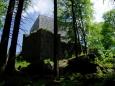 O Vítkově kameni píše i Adalbert Stifter ve svých románech Hvozd a Vítek. Hvozd, román z dob švédských nájezdů krásně popisuje kraj okolo Vítkova kámene, Frymburku a především Plešného jezera, kde ukrýval pán hradu po čas války své dvě dcery.