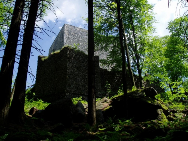 O Vítkově kameni píše i Adalbert Stifter ve svých románech Hvozd a Vítek. Hvozd, román z dob švédských nájezdů, krásně popisuje kraj okolo Vítkova kámene, Frymburku a především Plešného jezera, kde ukrýval pán hradu po čas války své dvě dcery.