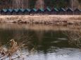 Chatky vodáckého tábořiště