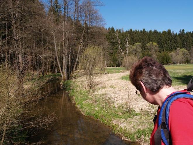 Jana sleduje tok Větší Vltavice. Ta ústí do Vltavy u Herbertova.