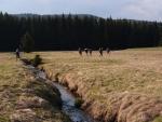 Na rakouské straně se tráva kosí a tak se jde pohodlně...