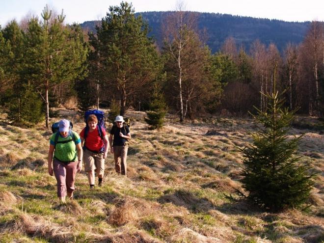 Tam na nás čeká již modře značená turistická cesta, která vede k hranici nad Dürnau.