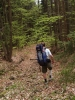 Další zkratka zpočátku vypadá všelijak, ale díky tomu, že už dávno nepršelo, dá se podmáčený terén okolo potoka celkem dobře projít. Lesní cesta vede přímo dolů a je už dávno nepoužívaná. Původně jsem chtěl jít do Lipna nad Vltavou, ale tam není kde se najíst, proto slézáme do Loučovic. Bohužel tím míjíme velmi zajímavý útvar Cikánský hrad a Čertovo kopyto, skálu podobnou těm na Mědvědí stezce.