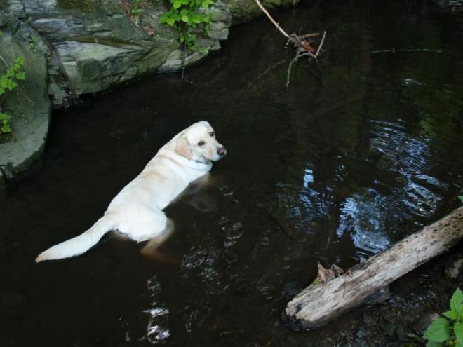 Dejsi má ráda vodu.
