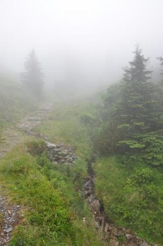 Sestup vede kolem Svatopeterského potoka.
