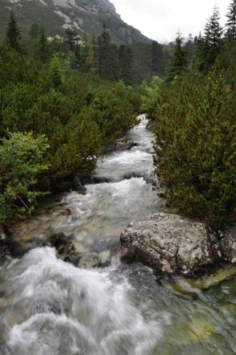 Říčka se jmenuje Hincův potok a ještě ji při výstupu párkrát překonáme.