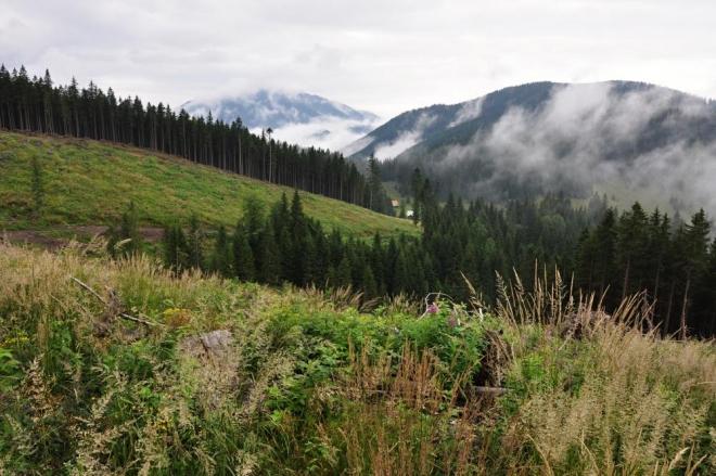 Výhledy jsou opět omezeny stoupající mlhou z dýchajících lesů. Opět stoupáme tvrdě vzhůru.
