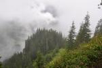 Z vrcholové skály jsou jistě parádní výhledy do Svidovského sedla, musíte sem ale přijít v lepším počasí.